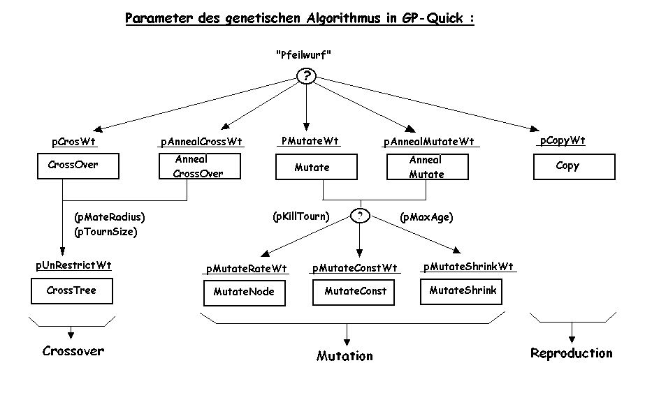 Parameter des GP-Quick